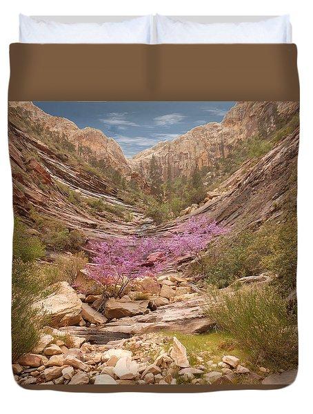 Terrace Canyon Duvet Cover by Alan Socolik