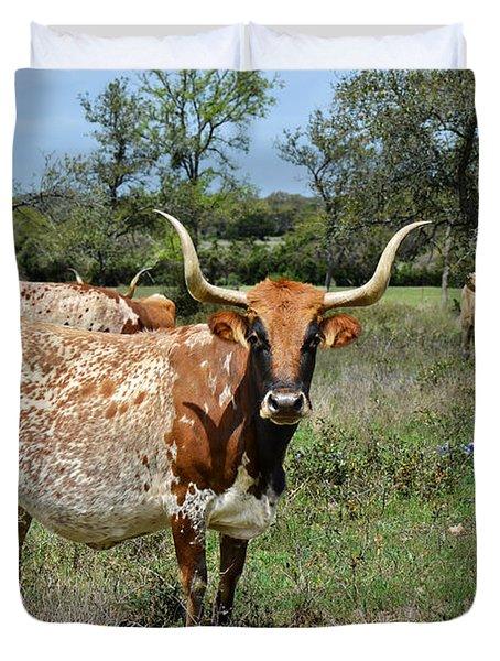 Texas Longhorns Duvet Cover by Christine Till
