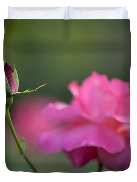 The Beauty And The Promise Duvet Cover by Mike Reid