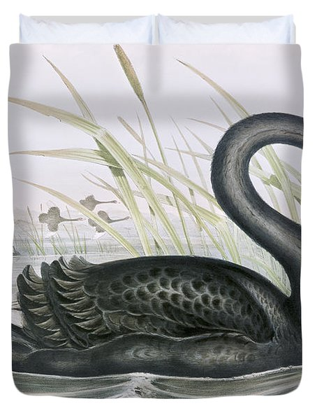 The Black Swan Duvet Cover by John Gould