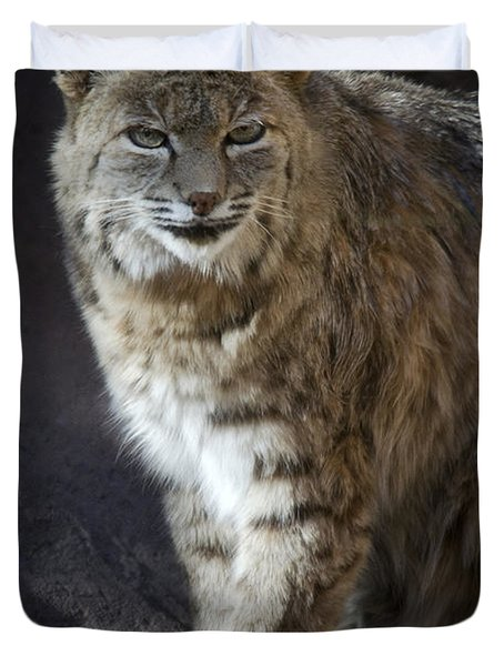 The Bobcat Duvet Cover by Saija  Lehtonen