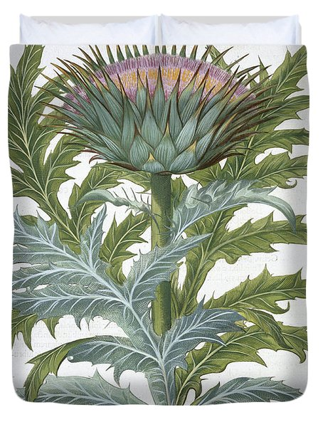 The Cardoon, From The Hortus Duvet Cover by German School