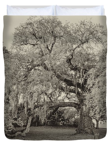 The Dueling Oak - A Place For Dying Bw Duvet Cover by Steve Harrington