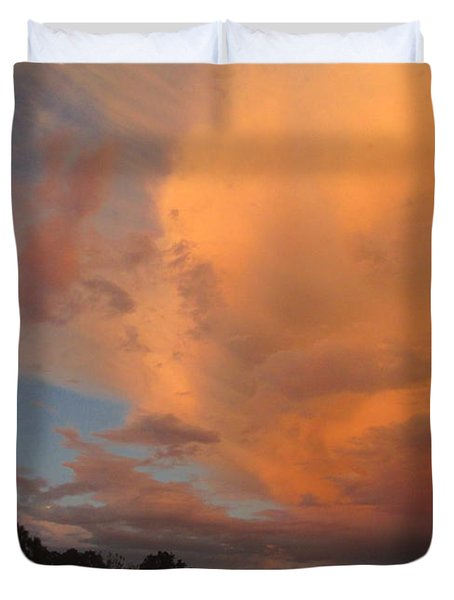 The Fury And The Beauty Duvet Cover by Joyce Dickens