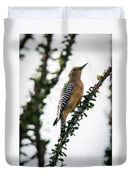 The Gila  Woodpecker Duvet Cover by Robert Bales