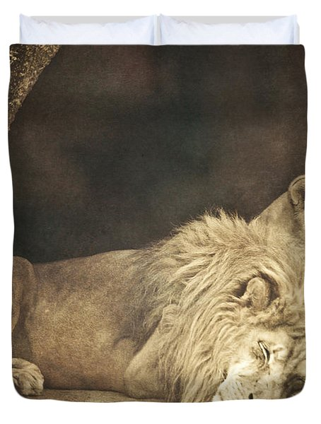 The Lion Sleeps Tonight Duvet Cover by Trish Tritz