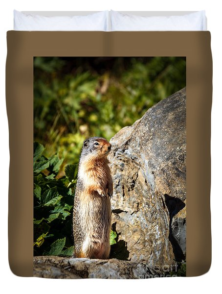 The Marmot Duvet Cover by Robert Bales