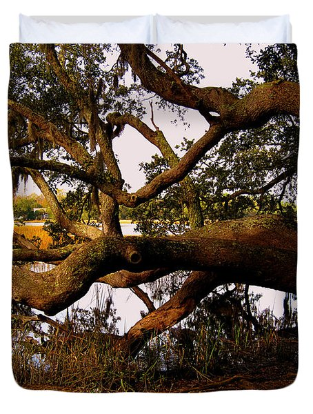 The Old Tree at the Ashley River in Charleston Duvet Cover by Susanne Van Hulst