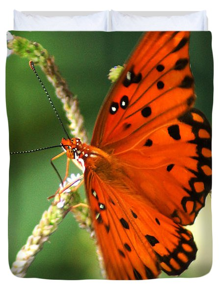 The Passion Butterfly Duvet Cover by Kim Pate