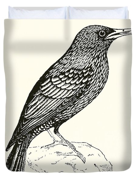 The Starling Duvet Cover by English School
