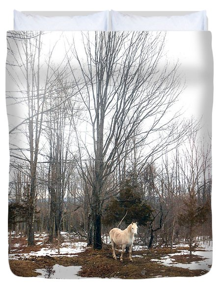 The White Stallion On A Snowless  Mound Duvet Cover by Patricia Keller