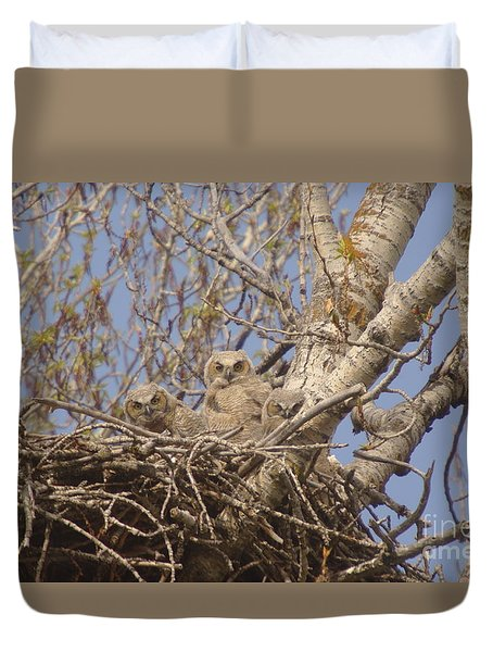 Three Baby Owls  Duvet Cover by Jeff Swan