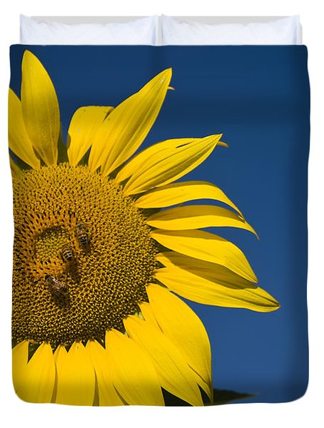 Three Bees And A Sunflower Duvet Cover by Adam Romanowicz