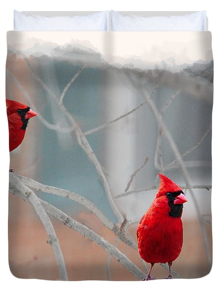 Three Cardinals In A Tree Duvet Cover by Dan Friend