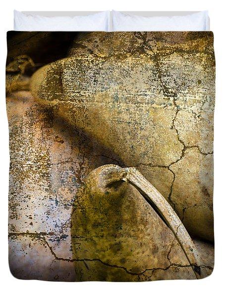 Three Gourds Duvet Cover by David Gordon