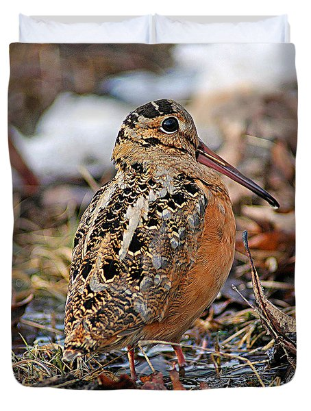Timberdoodle The American Woodcock Duvet Cover by Timothy Flanigan