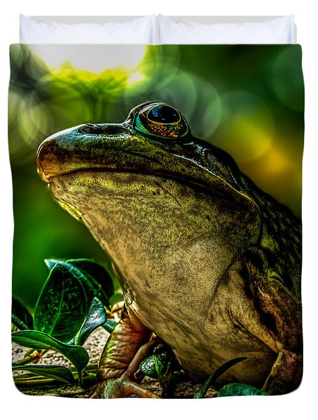 Time Spent With The Frog Duvet Cover by Bob Orsillo