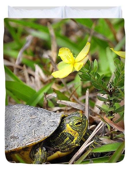 Tiny Turtle Close Up Duvet Cover by Al Powell Photography USA