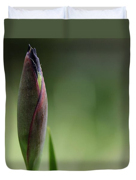 Today A Bud - Purple Iris Duvet Cover by Debbie Oppermann