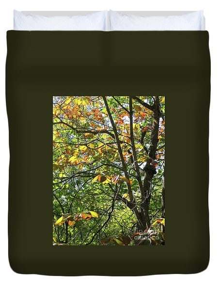 Touch Of Autumn Duvet Cover by Ann Horn