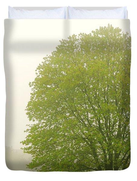 Tree in fog Duvet Cover by Elena Elisseeva