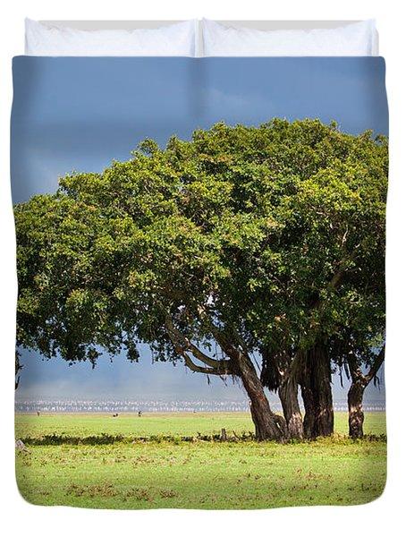 Tree On Savannah. Ngorongoro In Tanzania Duvet Cover by Michal Bednarek
