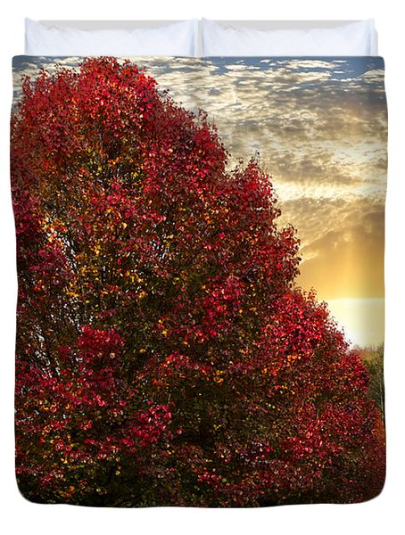Trees On Fire Duvet Cover by Debra and Dave Vanderlaan