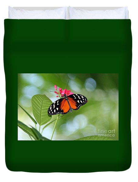 Tropical Hecale Butterfly Duvet Cover by Karen Adams