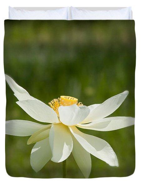 Tropical Lotus Flower Duvet Cover by Kim Hojnacki