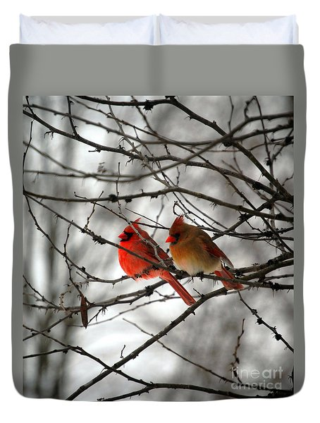 True Love Cardinal Duvet Cover by Peggy  Franz