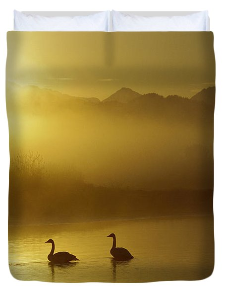 Trumpeter Swan Pair At Sunset Duvet Cover by Michael Quinton