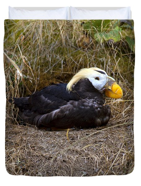 Tufted Puffin Duvet Cover by Mike  Dawson
