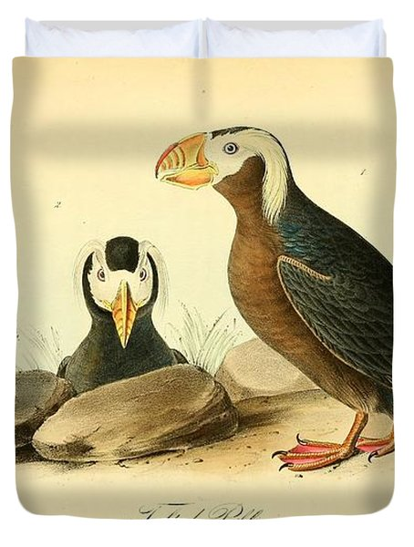Tufted Puffins Duvet Cover by John James Audubon