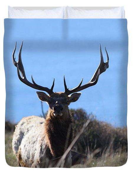 Tules Elks of Tomales Bay California - 7D21201 Duvet Cover by Wingsdomain Art and Photography
