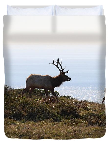 Tules Elks of Tomales Bay California - 7D21230 Duvet Cover by Wingsdomain Art and Photography