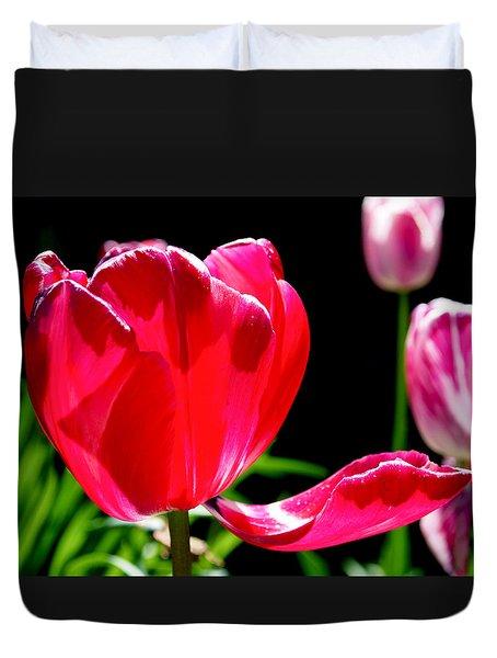 Tulip Extended Duvet Cover by Rona Black