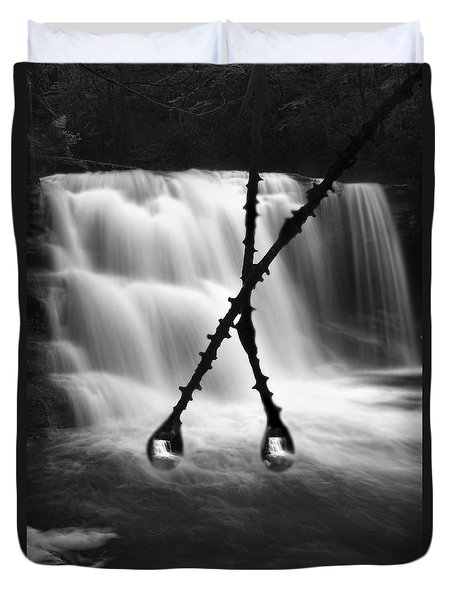 Twin Reflections Duvet Cover by Dan Friend