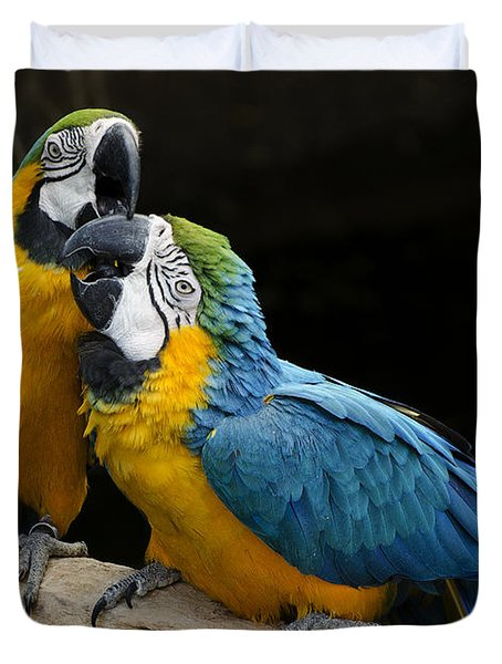 Two Parrots Squawking Duvet Cover by Dave Dilli