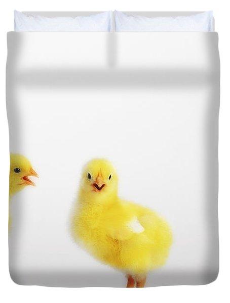 Two Yellow Baby Chicks Chirpingbritish Duvet Cover by Thomas Kitchin & Victoria Hurst