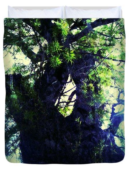 Untitled -tree Star Duvet Cover by Juliann Sweet