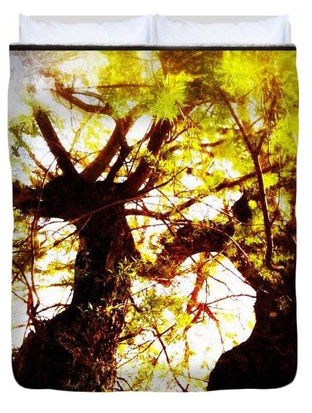 Untitled-twin Trees Duvet Cover by Juliann Sweet