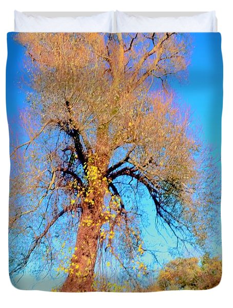 Up Rooted Tree Duvet Cover by Kathleen Struckle