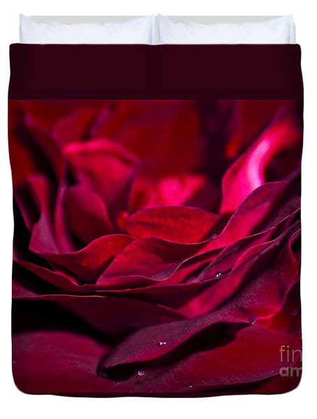 Velvet Red Rose Photograph By Jan Bickerton