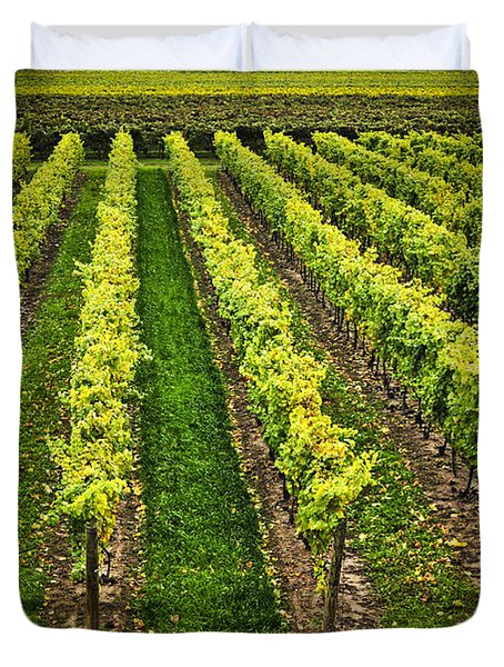 Vineyard Duvet Cover by Elena Elisseeva