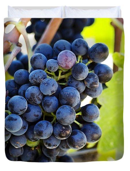 Vineyard Grapes Duvet Cover by Charmian Vistaunet
