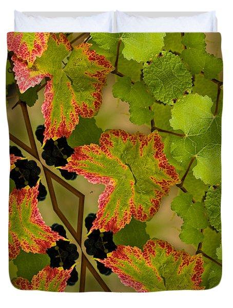 Vineyard quilt Duvet Cover by Jean Noren