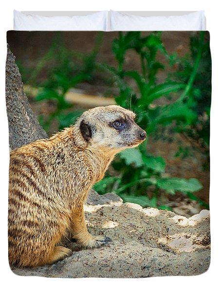 Watchful Meerkat Duvet Cover by Jon Woodhams