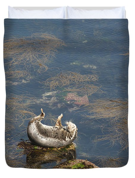 Watching You Watching Me Duvet Cover by Anne Gilbert