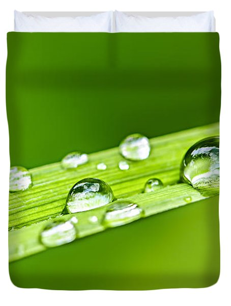 Water Drops On Grass Blade Duvet Cover by Elena Elisseeva