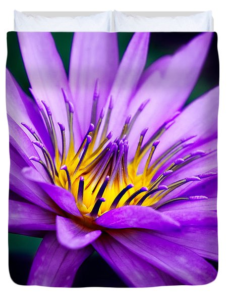 Waterlily #23 Duvet Cover by Chris Lord